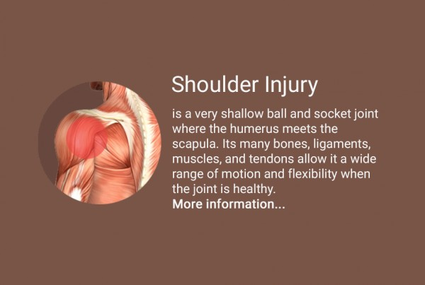 english-shoulder